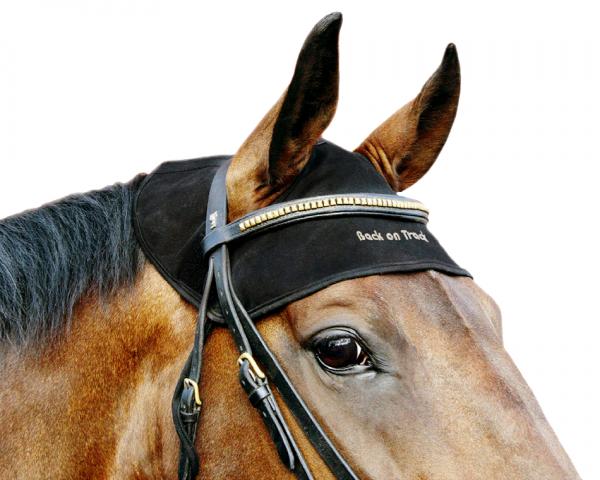 Back on Track Horse Neck Cap schwarz