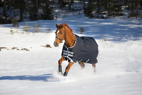 Horseware Decke Amigo Bravo 12 Turnout Medium 250 g
